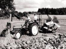 Hans Seeger mit Helfern beim Binden der Hafergarben